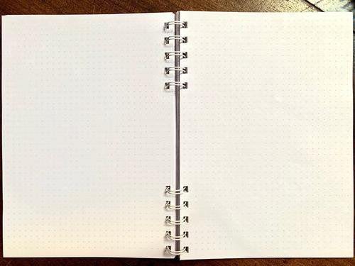cuaderno agenda bullet journal ryder carroll hojas punteadas