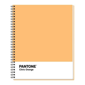Cuaderno Universitario Rhein Colección Pantone