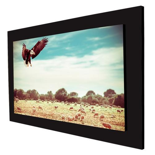 cuadro 60x40cms decorativo aguila 2!!!+envío gratis