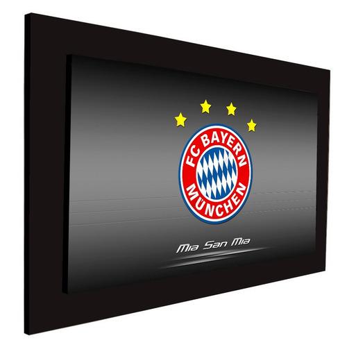 cuadro 60x40cms decorativo bayer munchen!!!+envío gratis