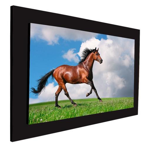 cuadro 60x40cms decorativo caballo 2!!!+envío gratis