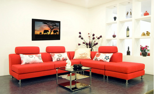 cuadro 60x40cms decorativo elefante 3 !!!+envío gratis