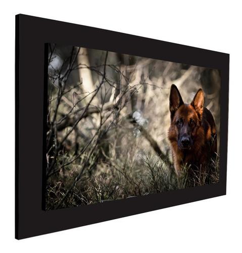 cuadro 60x40cms decorativo perro 2!!!+envío gratis