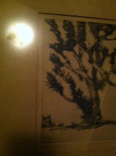 cuadro antiguo arbol