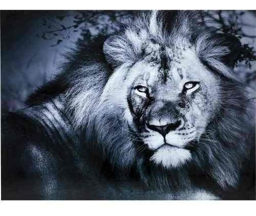 cuadro cristal rey león tumbado 120x160cm kare design