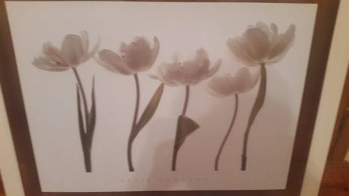 cuadro de katja marzahn aprile tulipano