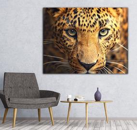 940 Koleksi Gambar Kursi Jaguar Jumbo Gratis Terbaik