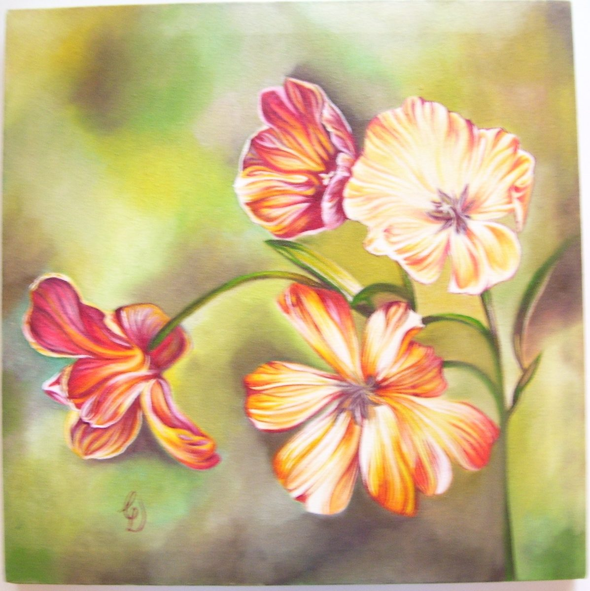 cuadro flores sobre bastidor decoracin amapolas lilium