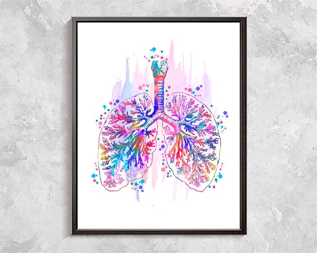 Cuadro Medicina Anatomia De Pulmon Y Bronquios - $ 140.000 en ...