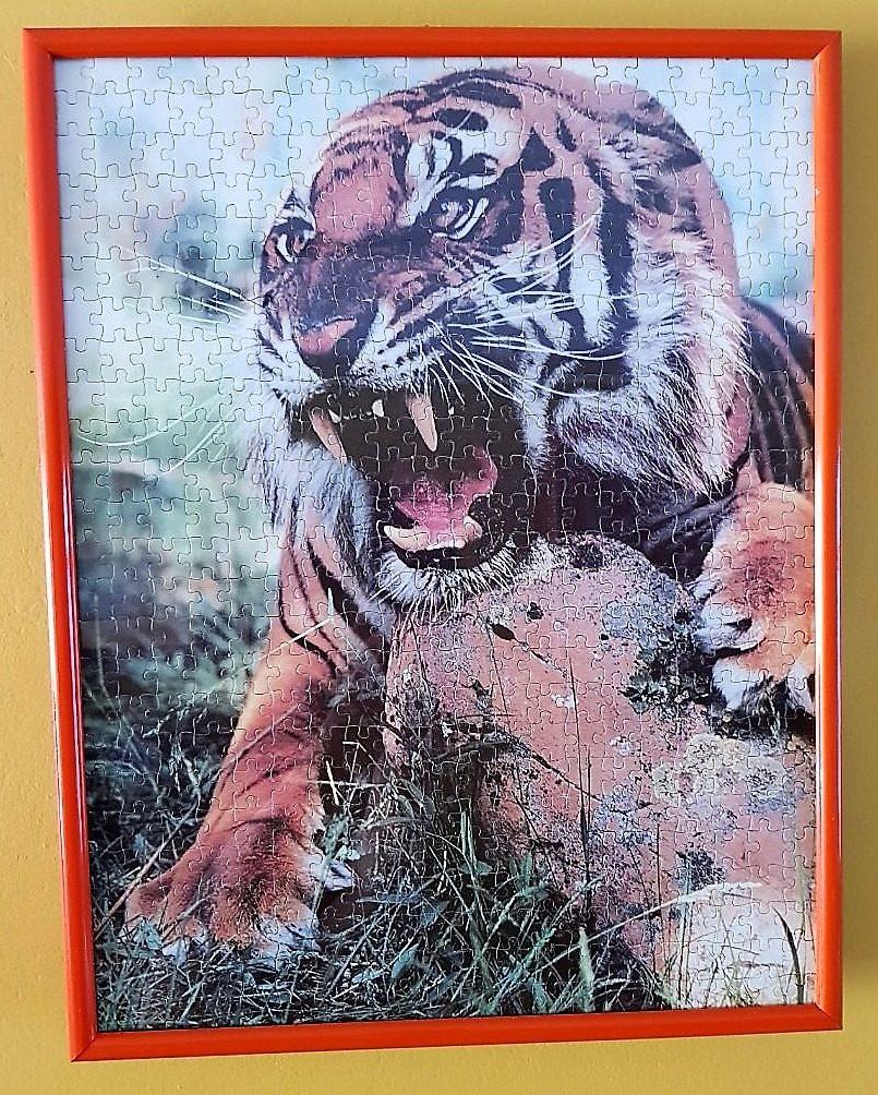 Cuadro Rompecabezas: Tigre De Bengala 500 Piezas - S/ 90,00 en ...