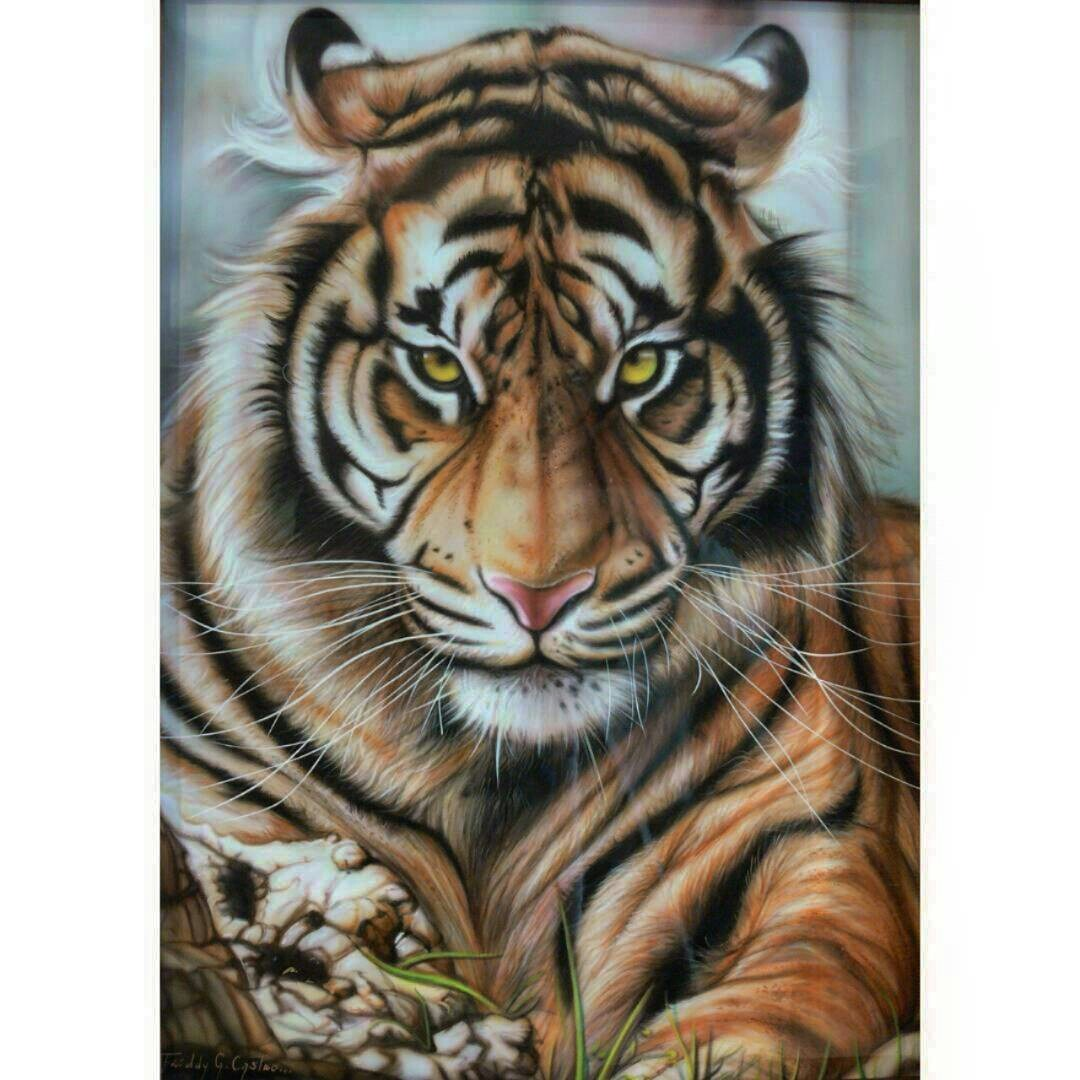 Cuadro Tigre De Bengala Autor Freddy Castro Bs
