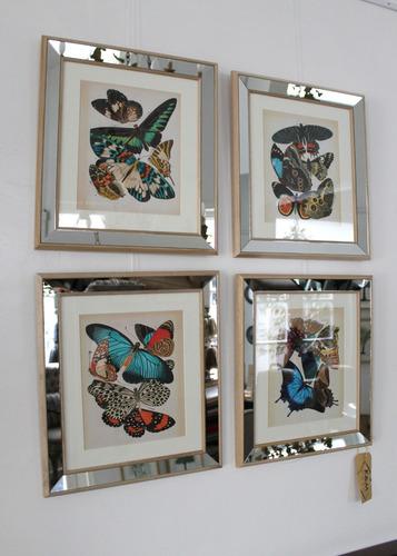cuadros de mariposas con marco de espejo! 4 modelos!