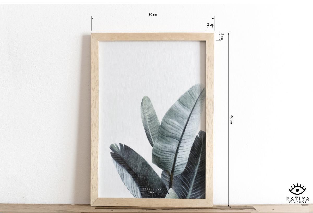 Cuadros Decorativos Ilustrados Bótanicos Enmarcados Natural - $ 200 ...
