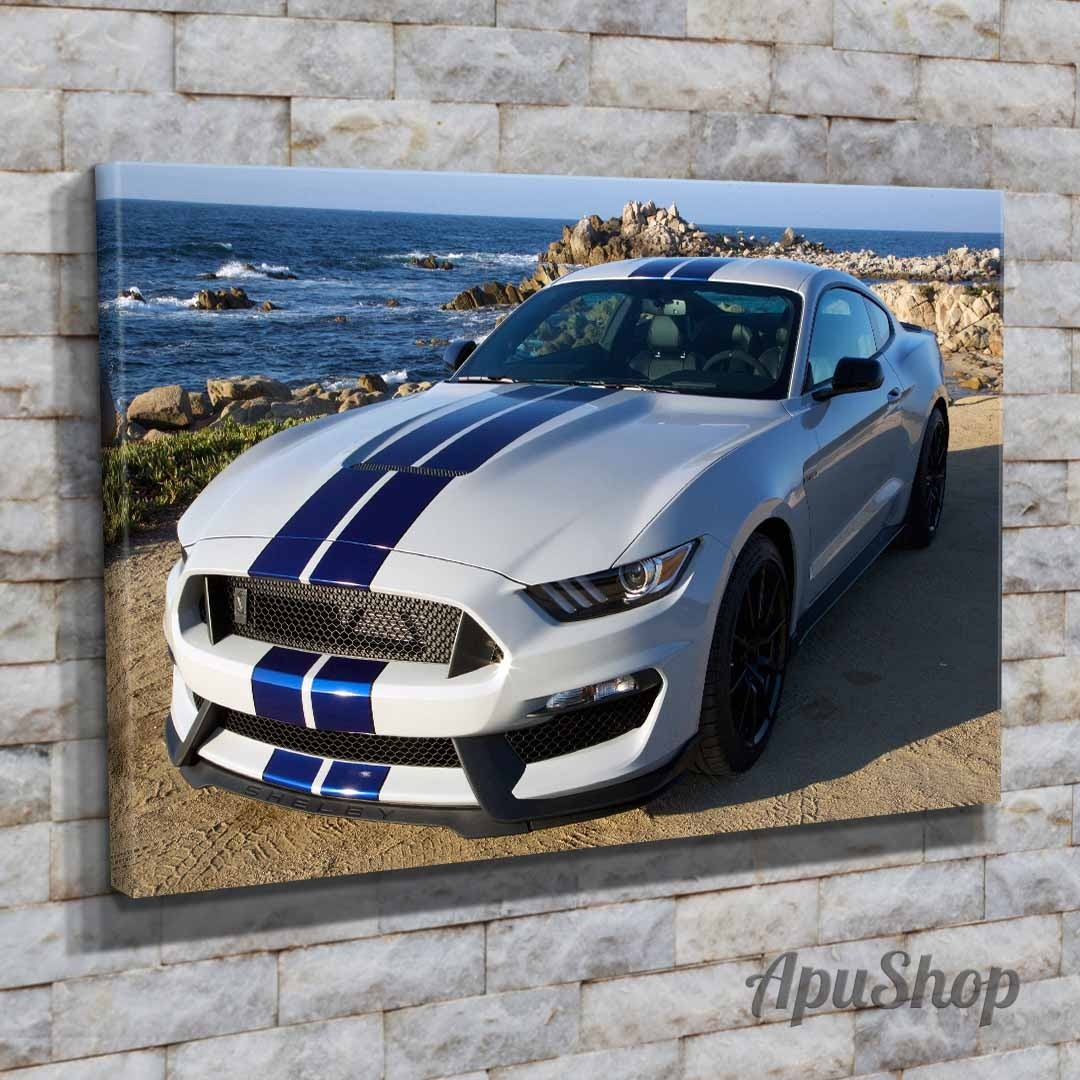Cuadros Lienzo 45x30 Auto Ford Mustang Shelby Coupé Y Más - $ 599,00 ...