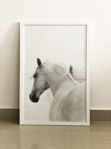 cuadros modernos caballos set x2 con marco + vidrio 50x70