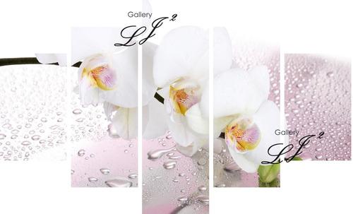 cuadros relajantes de orquídeas flores - zen naturaleza arte