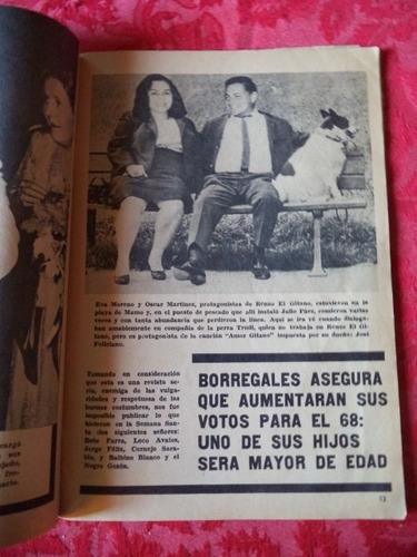 cuando existía el gallo pelón en 1967   cth vdh