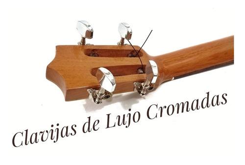 cuatro venezolano profesional concierto estuche rígido duro
