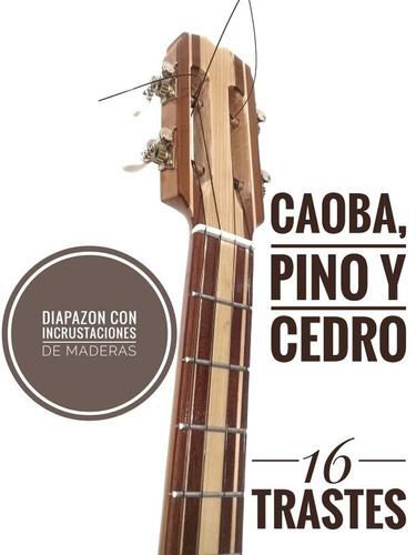 cuatro venezolano profesional de concierto 16 trastes forro