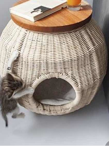 cucha de perro pequeño o gato