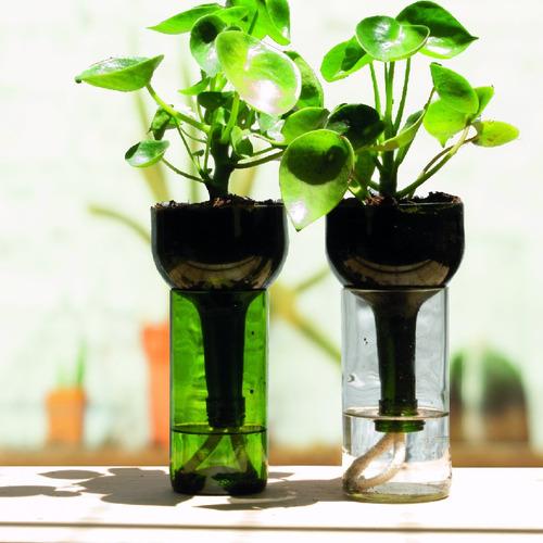 cuchara little plant 24 sin soporte, maceta autorregante