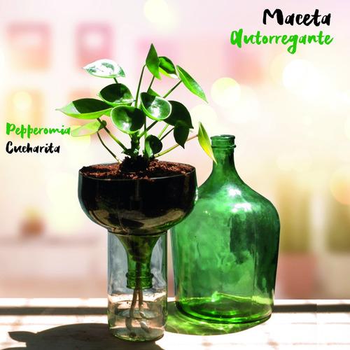 cuchara little plant 32 sin soporte, maceta autorregante