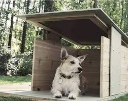 cuchas de perro