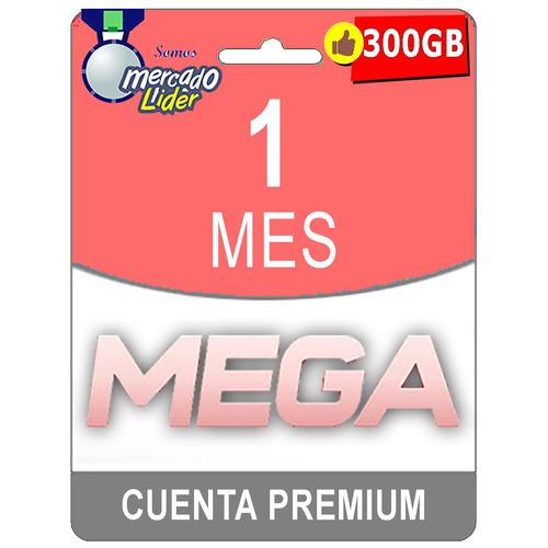 cuentas premium mega 30 dias 1 mes oficial 300gb mensual