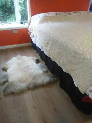 cueros de oveja sureña curtido a mano de manera natural