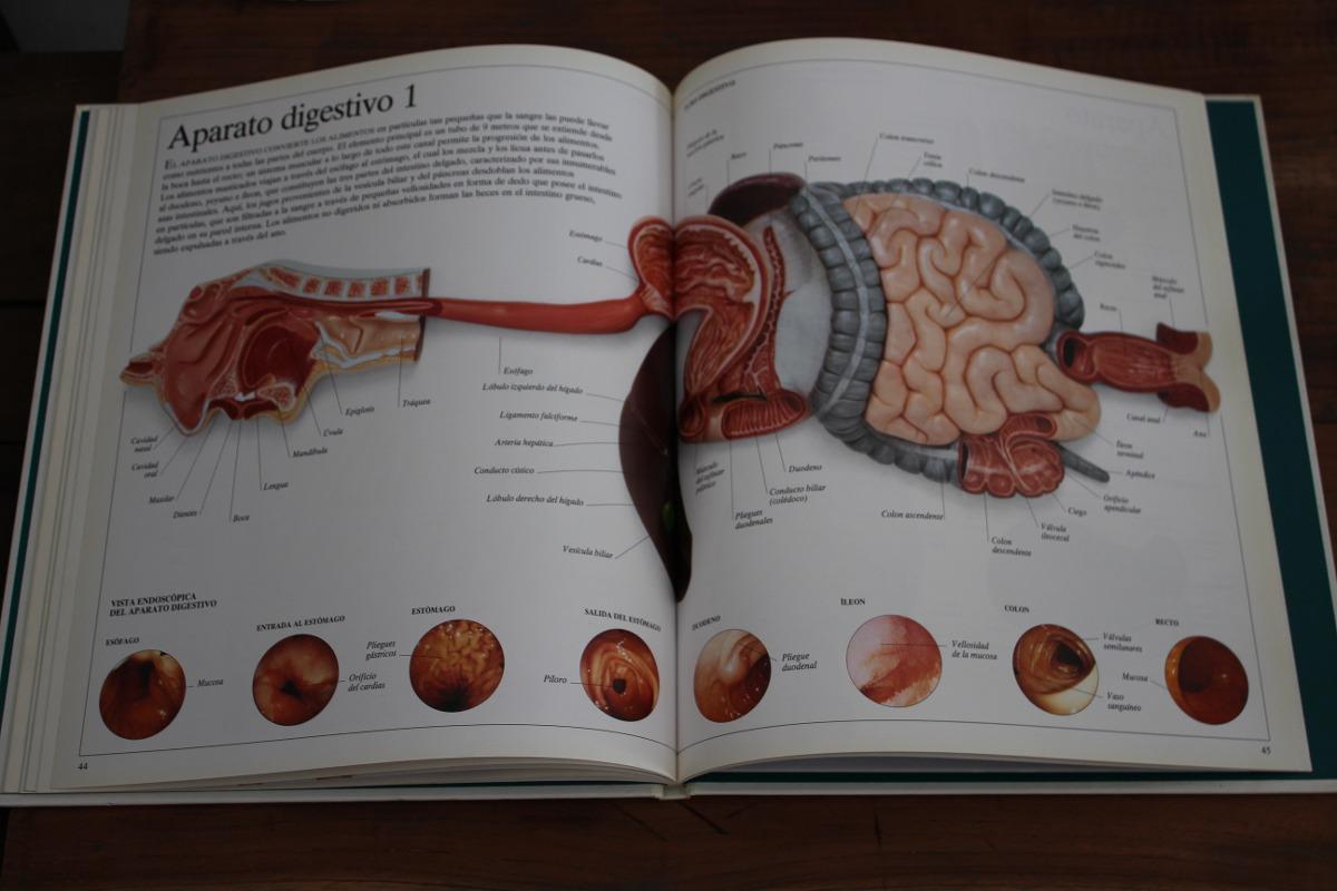 Cuerpo Humano - Diccionario Visual Altea - $ 100,00 en Mercado Libre