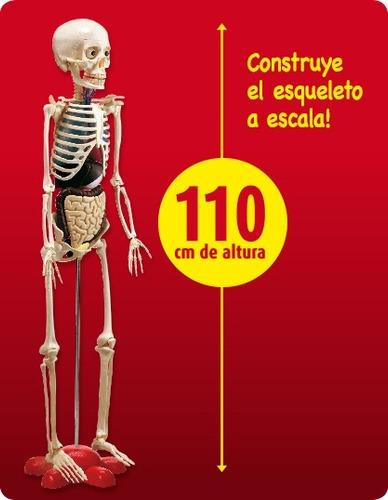 cuerpo humano rba - fasiculos varios - consultar