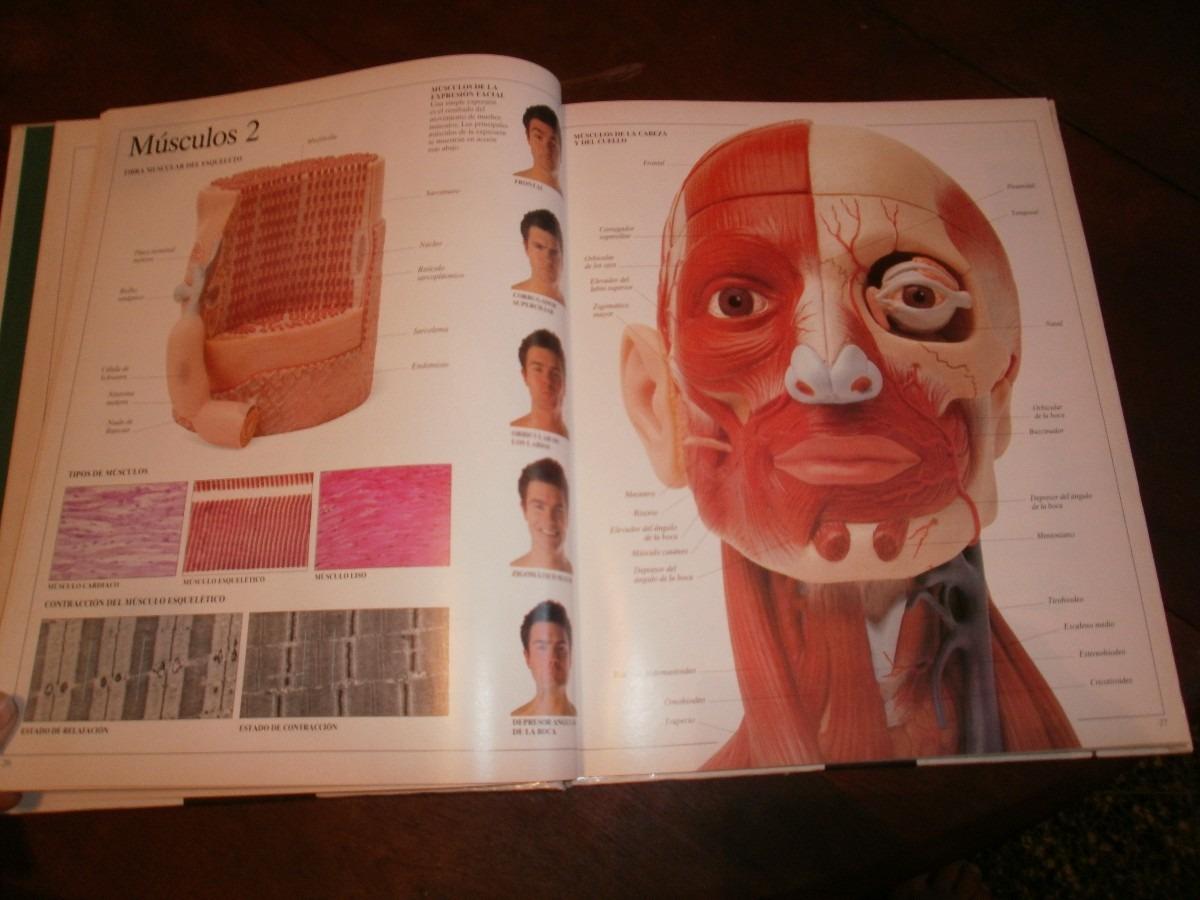 Cuerpo Humano Y Animales - Diccionario Visual - Tomo I - $ 55,00 en ...