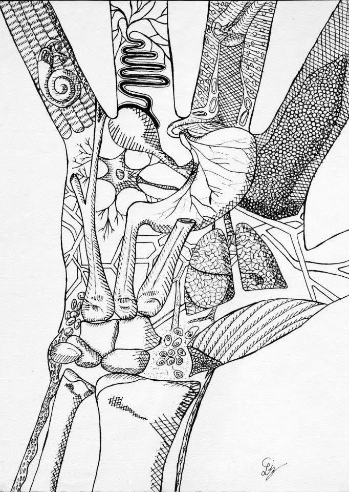 Cuerpo Sin Relevancia - Dibujo Mano Anatomía - $ 500.00 en Mercado Libre