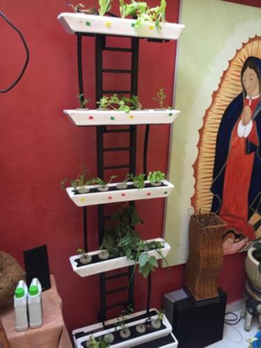 cultivo hidroponico 5 modulos, 25 plantas