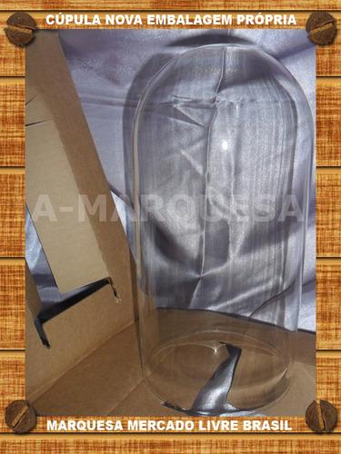 cupula redoma de vidro arte sacra - eua + base madeira nova
