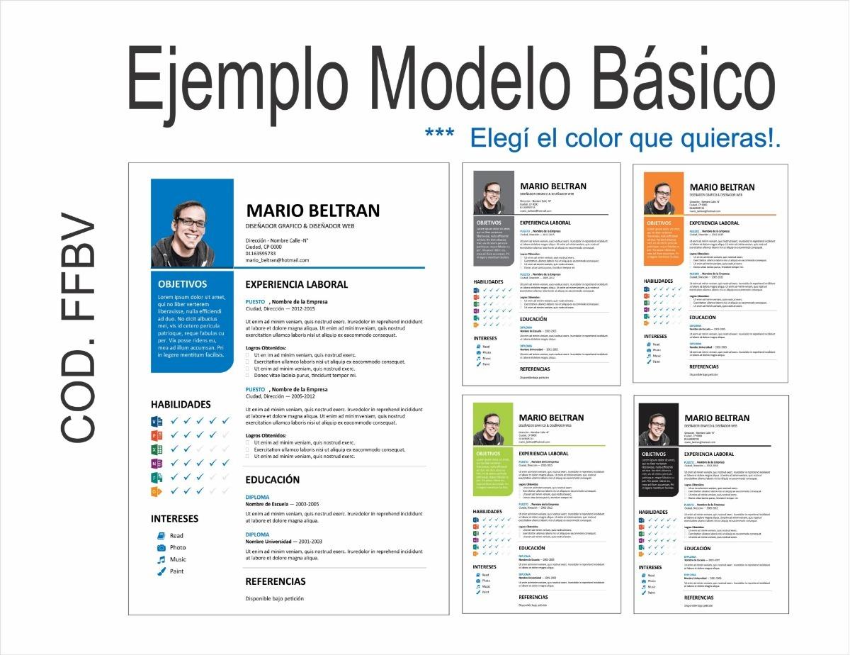 Curriculum Vitae Creacion Cv Modelo Basic 10 00 En Mercado Libre