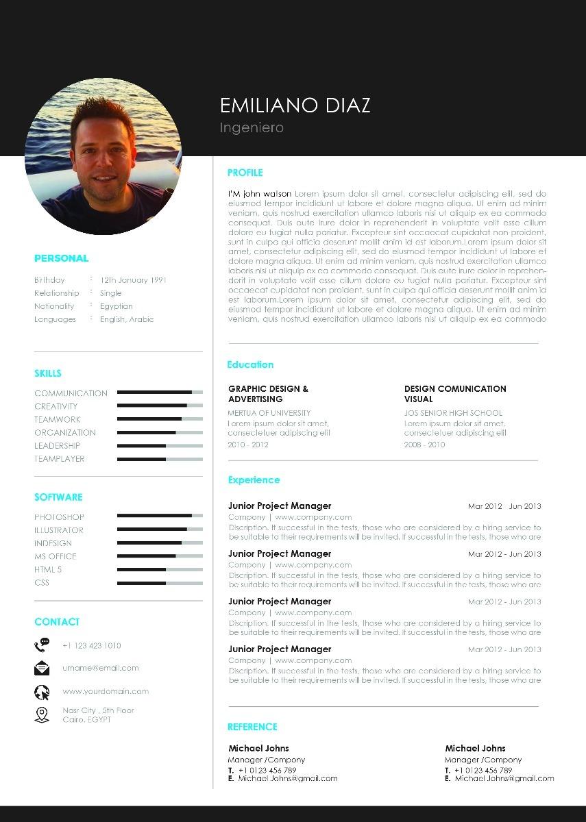Curriculum Vitae Cv Personalizado Profesional Pdf - $ 350,00 en ...