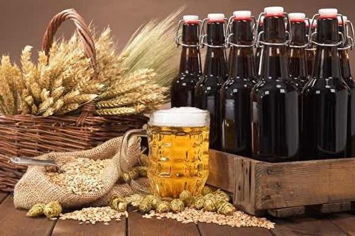 curso aprenda a fazer cerveja