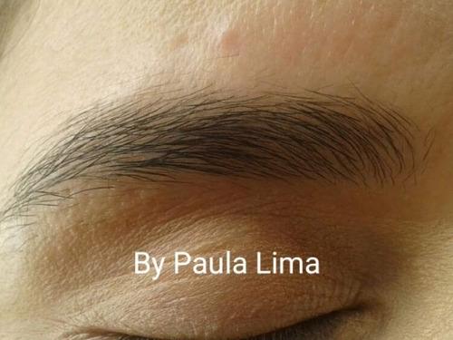 curso arte em sobrancelhas by paula lima