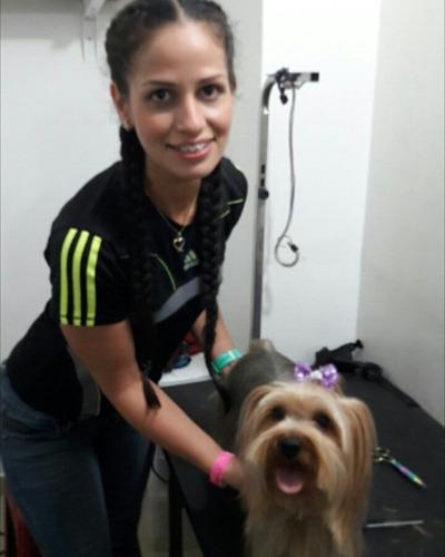curso basico de peluqueria canina