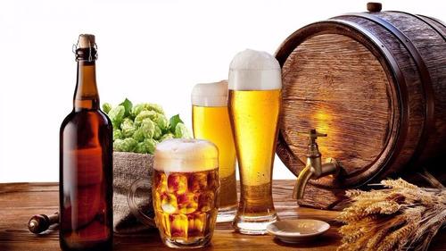 curso cerveja artesanal + frete grátis + brindes !