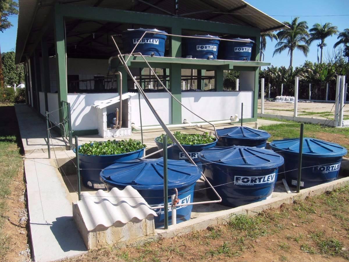 Curso cria o de til pias em caixas dagua e piscinas r for Manual de piscicultura tilapia