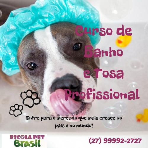 curso de banho e tosa profissional