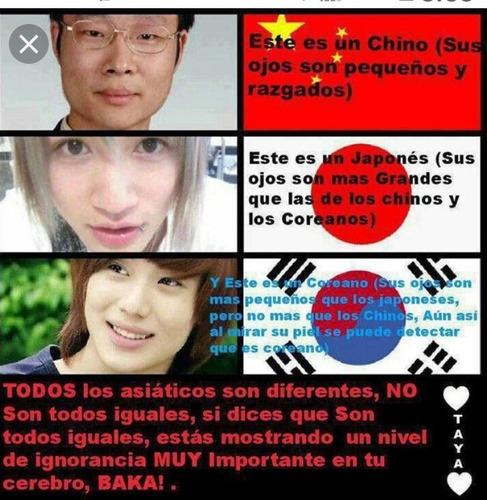 curso de chino  mandarín coreano tailandés o japonés