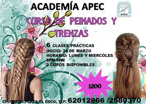 Curso De Peinados Y Trenzas En Mercado Libre