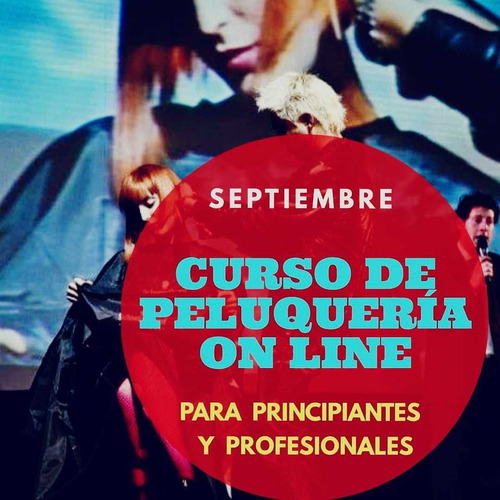 curso de peluquería on line  para principiantes y profesiona