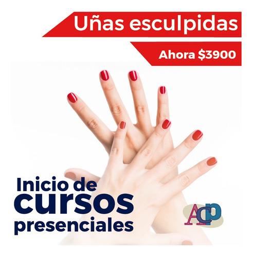 curso de uñas esculpidas en acp (2 meses)