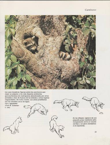 curso de zoología más dos revistas de los animales y poster