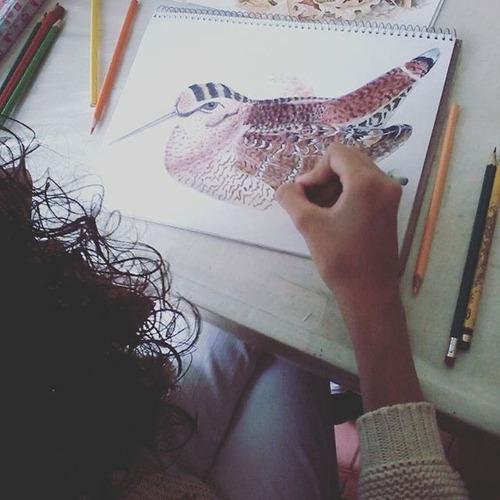 curso dibujo pintura para niños universitarios adultos lima