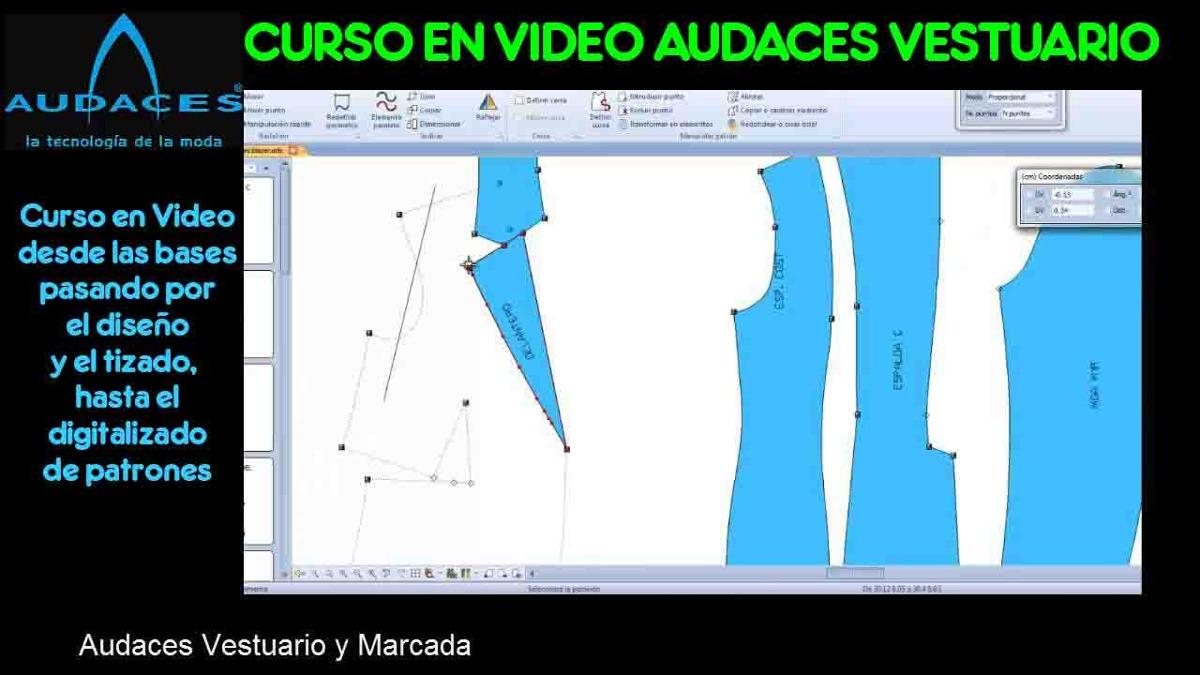 Curso En Video De Audaces (molderia Computarizada)+pizarras - $ 950 ...